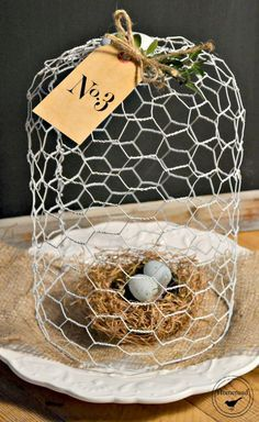Chicken Wire Cloche with bird's nest and little eggs - very sweet decor idea