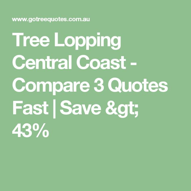 Tree Lopping Central Coast - Compare 3 Quotes Fast | Save > 43%
