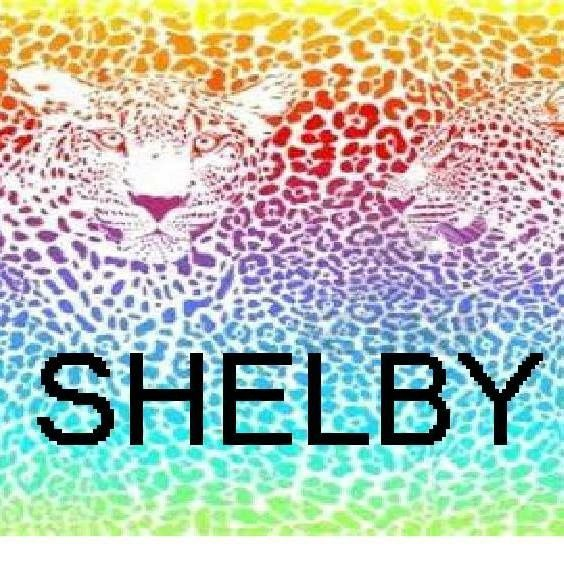 Shelby The Name In Letters