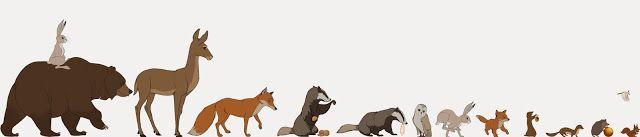 LA CIENCIA DE LA VIDA: El oso y la liebre, un cuento de navidad