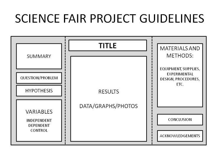 Example Of Information Of A Research Paper Of Science Fair 3rd Grade