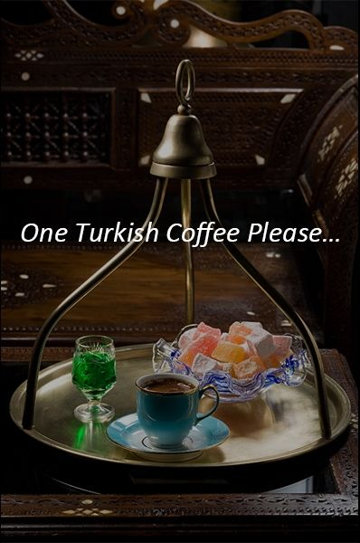 After a delicious meal in Istanbul, don't forget to order a Turkish coffee. It's the only thing that you can find in every (even in Chinese or Italian) restaurant and cafe.  To find best restaurants and cafes in Istanbul you can visit.. http://www.istanbulfind.com/en/restaurants-amp-caf-s/17
