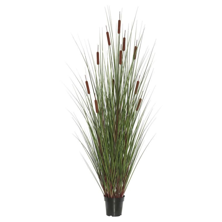 Artificial Grass with 6 Cattails Potted (36) Green/Brown - Vickerman