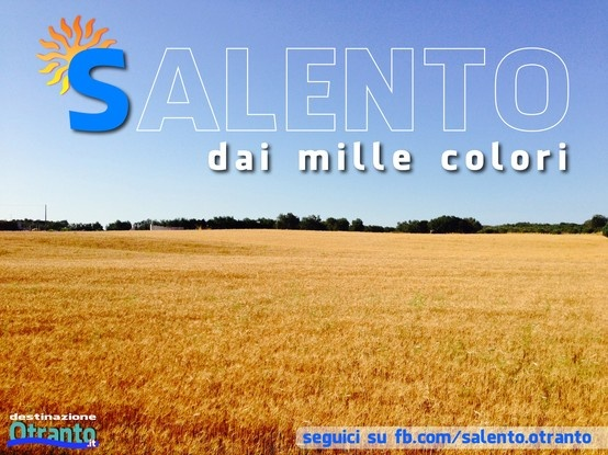 in questo periodo il mare del Salento può anche essere dorato... campi di grano