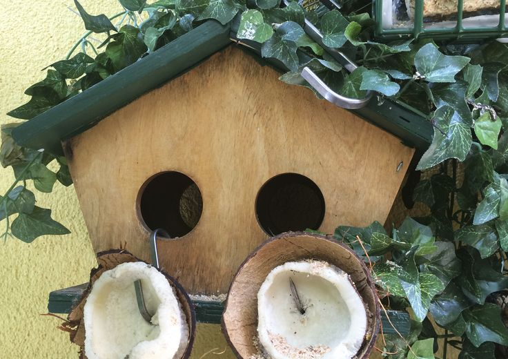 Progetto di STRA-DE  STRATEGIC-DESIGN. Garden Bird Friendly : mangiatoia con noce di cocco e palla di semi e insetti,ideale per cince e cinciarelle .