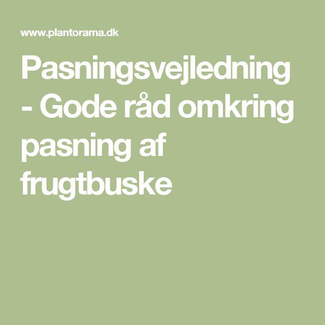 Pasningsvejledning - Gode råd omkring pasning af frugtbuske