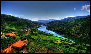 Quick Facts about Portugal:   -Despite its small area Portugal ranks 6th in the world as a wine-producing country.   -Douro was the world's first wine region, its boundaries being demarcated in 1756.  -Portugal has possibly more indigenous grape varieties than any other country - well over 200.  -The number of micro-climates and soil types confer specific and unique features to Portuguese wines - a plus for the wine lover, especially in tandem with the number of grape varieties.