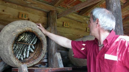 Mein Lernprozess mit Einfachbeuten: Das Ziel war eine möglichst wesensgemäße, für die Bienen stressarme Bienenhaltung aufzubauen.  So sind die Einraumbeute und die Bienenkiste entstanden.