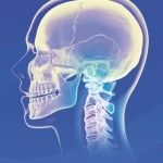 The upper cervical spine (upper neck) is one of the most complicated areas in the entire body.  It is a very gentle and safe procedure that has changed many lives. (912) 882-3323