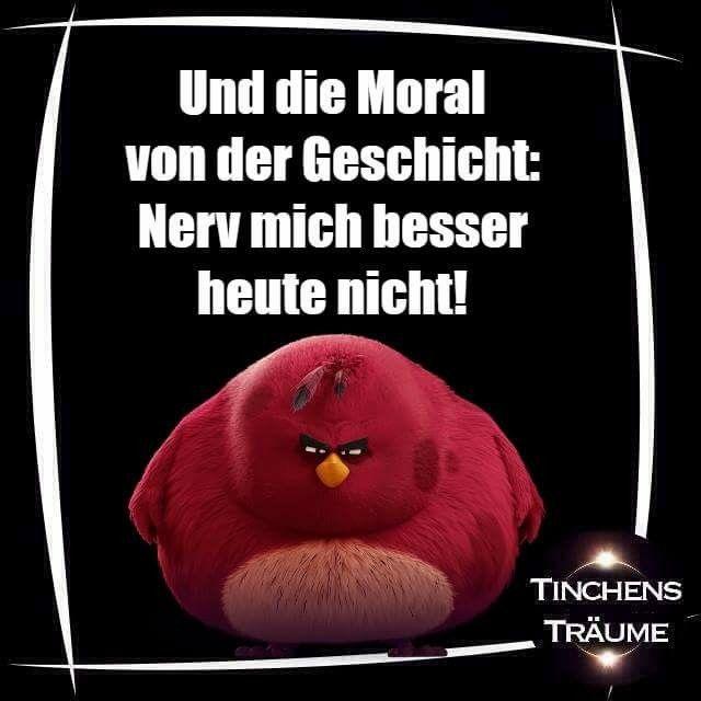 Pin Von Devil75 Auf Tinchens Traume Witzige Bilder Spruche Nachdenkliche Spruche Spruche Humor