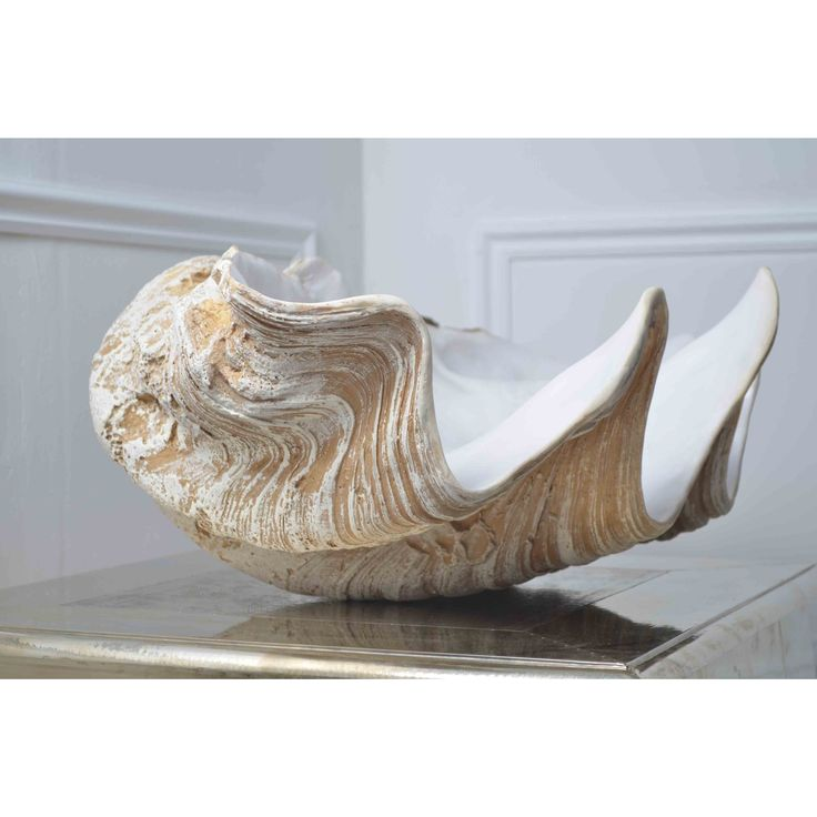 Giant Clam Shell | Accessories | Sweetpea & Willow                                                                                                                                                                                 More