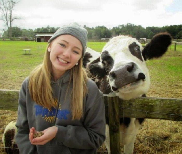 Картинки с коровами с людьми