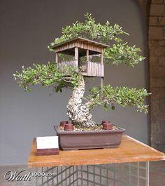 Miniature Treehouse With Bonsi Tree Such A Cute Idea