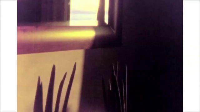 """Allucinazione.net - Produzioni Video a Roma - Nowness """"Pellicano"""""""