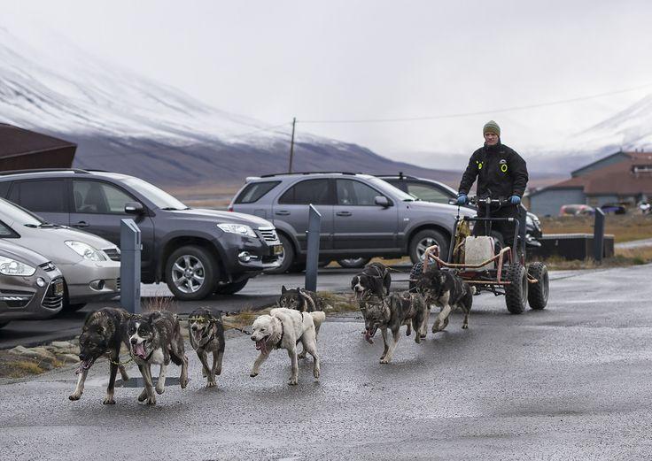 All sizes   Longyearbyen, Svalbard   Flickr - Photo Sharing!