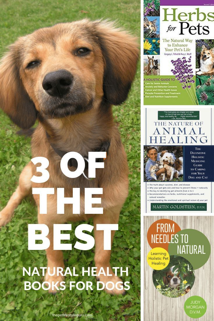 With All Of The Pet Care Books On The Market We Thought We D Save You A Little Research Here Are 3 Of The Best N Natural Dog Health Health Books Holistic