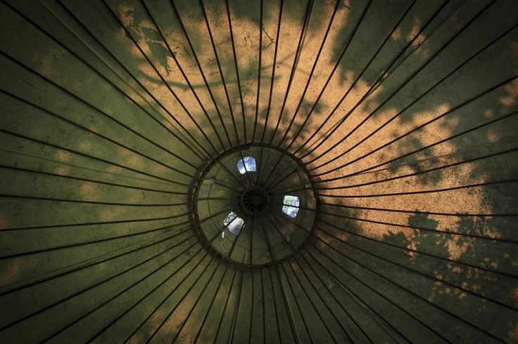 Up On The Inside - Photo by Denise O'Donnell