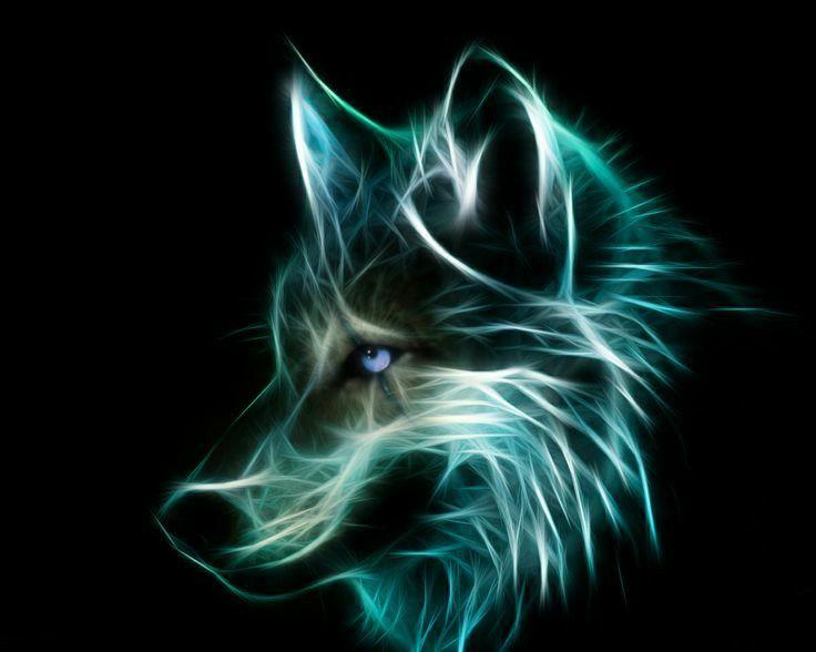 Wolf Fractal