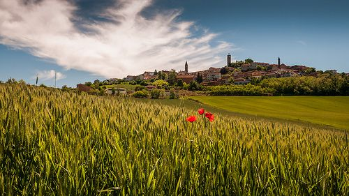 The Village Of LU Monferrato