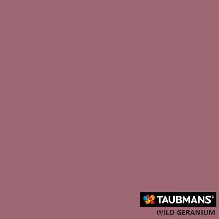 #Taubmanscolour #wildgeranium