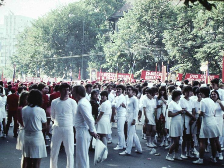Pregatire 23 August 1984-1986
