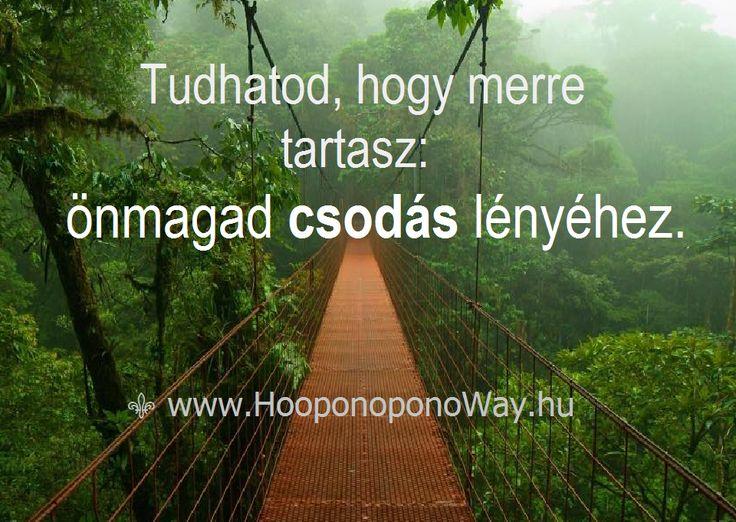 Hálát adok a mai napért. Az utazás végtelen, és soha nem látott ajándékokkal kecsegtet. Csak indulj és haladj. Félelem nélkül. Tudhatod, hogy merre tartasz: önmagad csodás lényéhez. Így szeretlek, Élet!  ⚜ Ho'oponoponoWay Magyarország ⚜ www.HooponoponoWay.hu