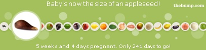 Free Pregnancy Tickers - Pregnancy Baby Tickers - Due Date Tickers