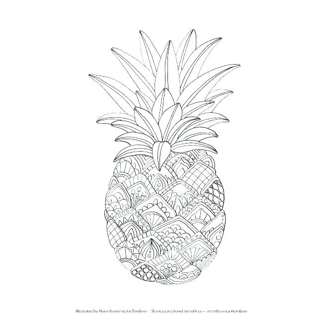 Pineapple Coloring Page Coloring Pages Free Free Coloring Pages Coloring Pages Pineapple Co Fruit Coloring Pages Mandala Coloring Pages Abstract Coloring Pages