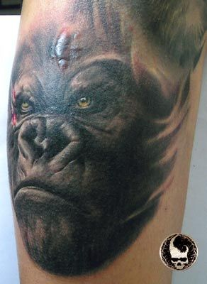 1000 ideas about wildlife tattoo on pinterest forest for Little dragon tattoo