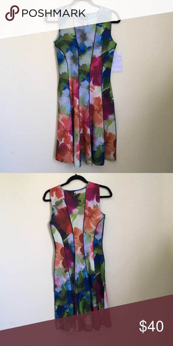 Floral fit n flare dress Floral fit n flare sleeveless scuba dress. Scuba fabric size 6 Adrianna Papell Dresses
