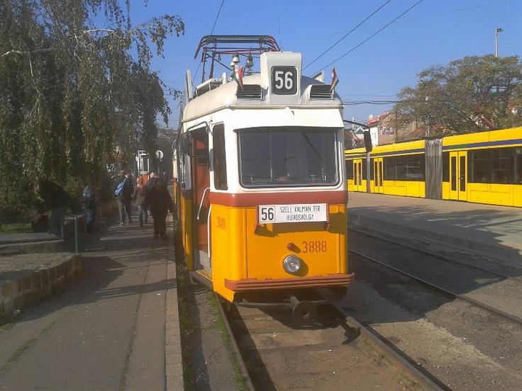 Az 56-os magyarok világszövetsége levélben kereste meg Tarlós Istvánt, hogy október 23-án, a korábban 56-os számjelzéssel közlekedő hűvösvölgyi villamos kapja vissza az 56-os számjelzést. Ennek megfelelően a BKV a régi UV villamosokkal különjáratotokat indított a korábbi...