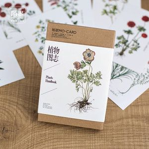 Mo Card Postcard Set   Plants Handbook