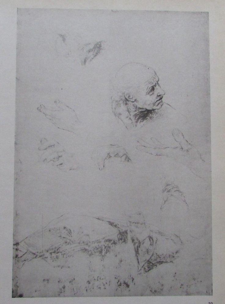 Raffael ENTWÜRFE Reproduktion alter Druck old print italienischer Maler