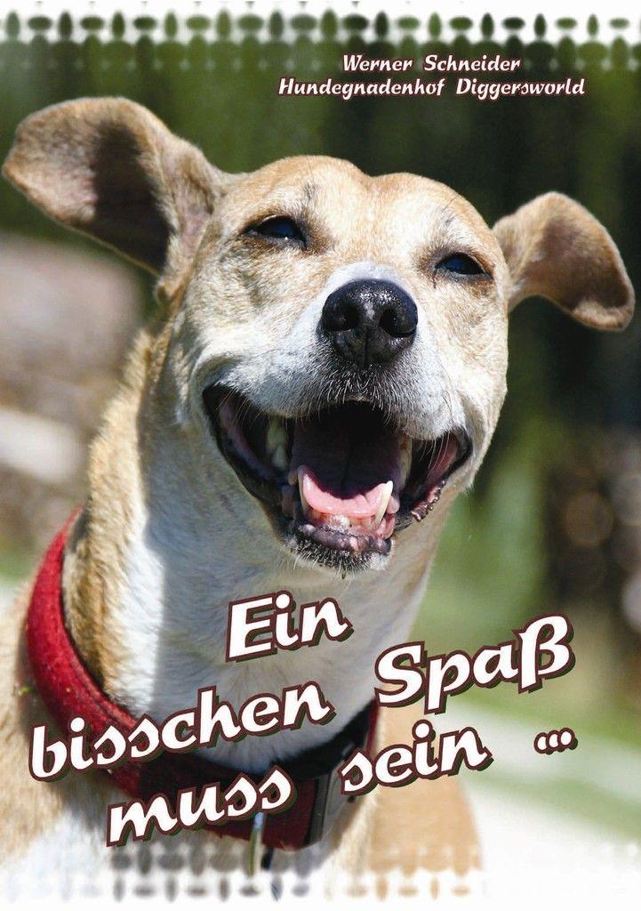 Artikelversand Deutschland - hundegnadenhofs Webseite!