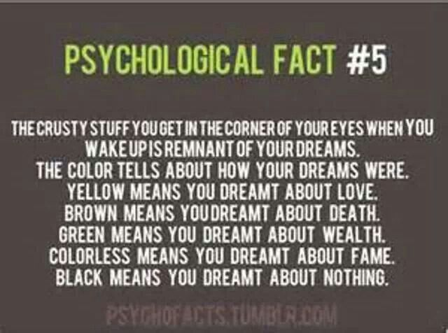 This is like soo COOL! I needed to know this: since I love dreams