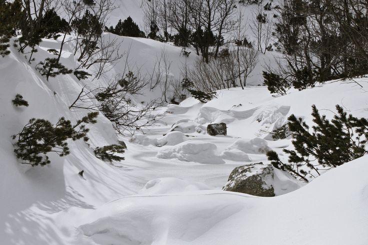 Biela Voda-chata pri Zelenom Plese