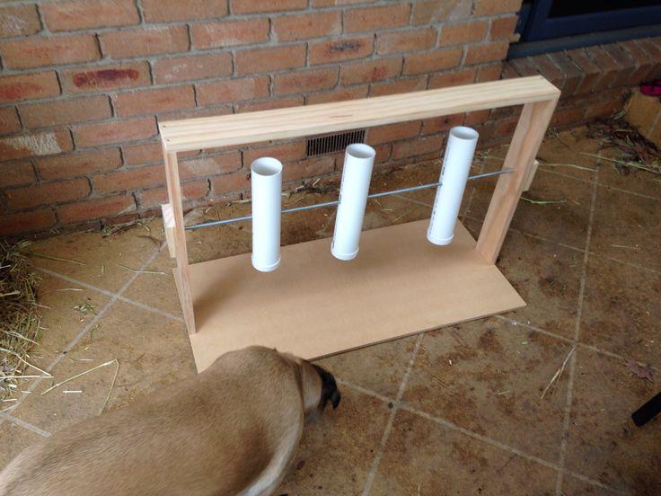 Best 25 Dog Enrichment Ideas On Pinterest Diy Dog Toys