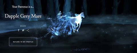 How to Find Your Patronus on Pottermore | The Daily Dot