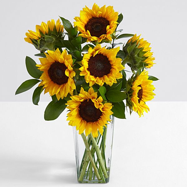 Send Sunflowers And A Little Sunshine To Brighten Up Someone S Day Gorgeous And Always Cheerful These Happy Flowers Sunflower Arrangements Sunflower Delivery