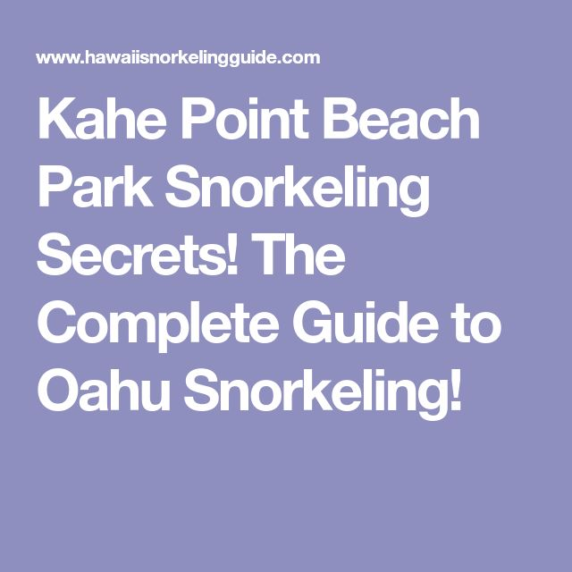 Kahe Point Beach Park Snorkeling Secrets! The Complete Guide to Oahu Snorkeling!
