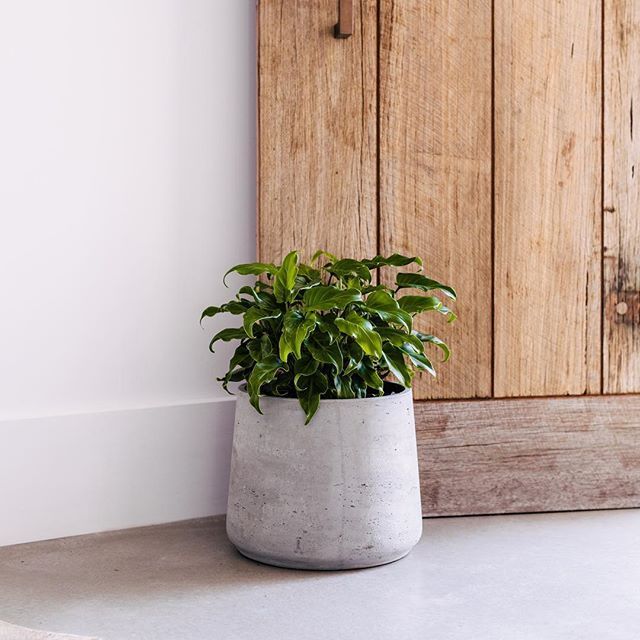 Pots make great door stops. Seriously, they do.