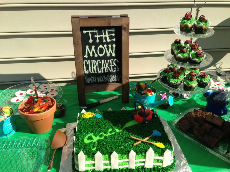 Lawn Mower themed kids birthday party!