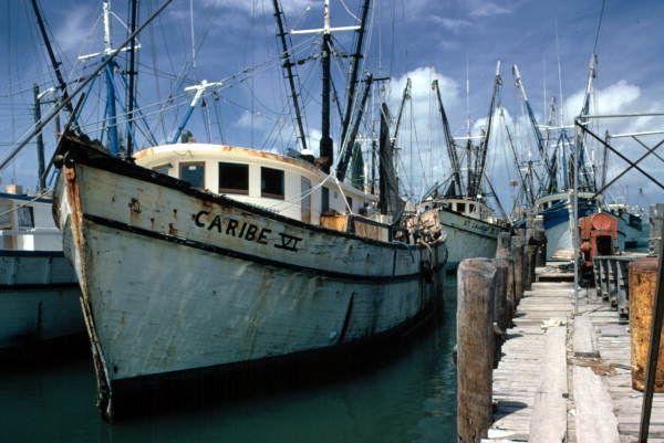 33 Best Shrimp Boats Images On Pinterest Shrimp Boats