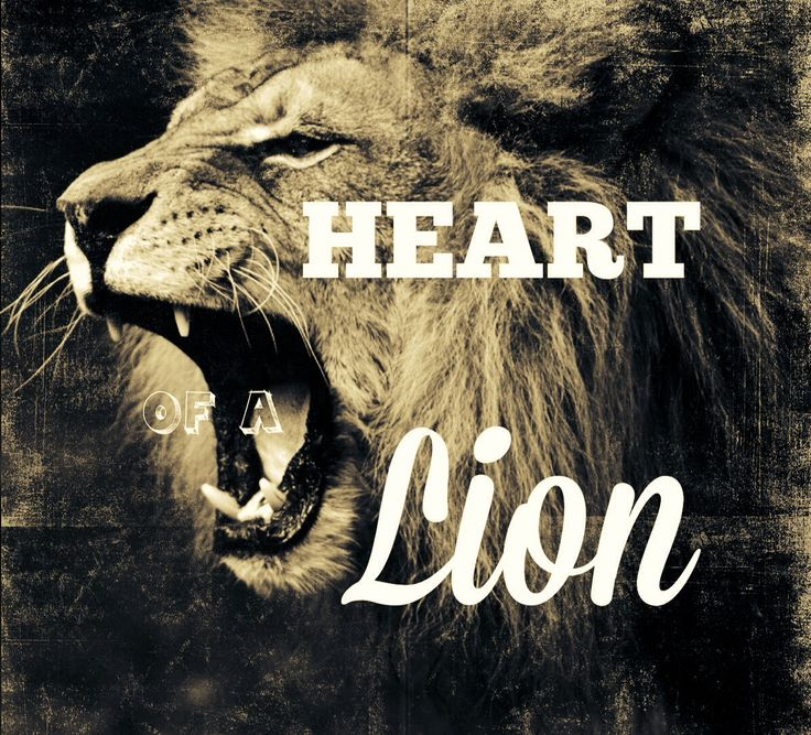 { Heart of a Lion }