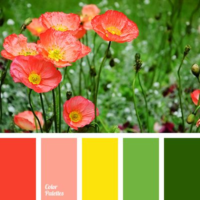 Rich and bright composition just like summer colors of grass. Inspiring and showing great promise one as young years. Shades of green are very fresh and pl
