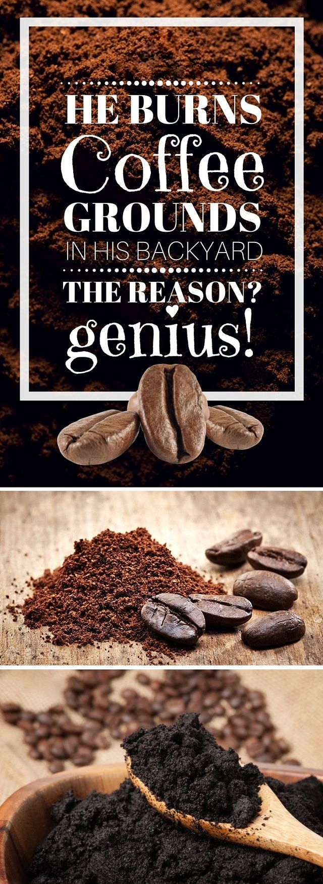 He Burns Coffee Grounds in His Backyard. The Reason? Genius!