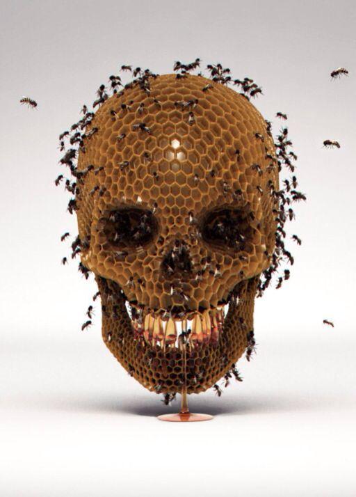 Skull Hive by Luke Dwyer.