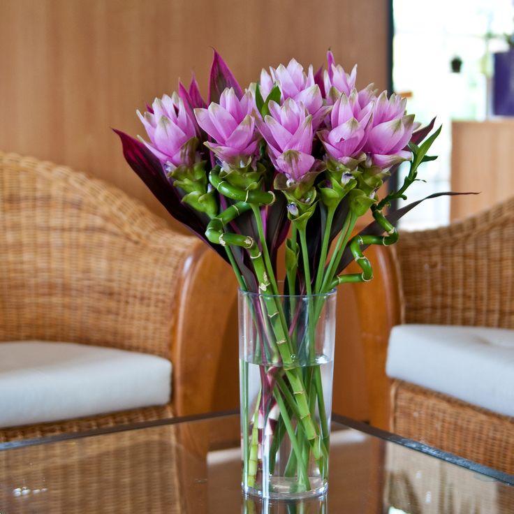 Les 122 meilleures images du tableau nos bouquets de for Envoi fleurs domicile