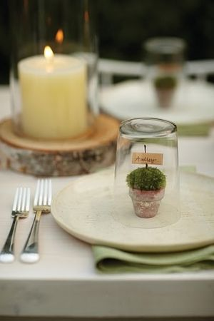 each name card covered with guests glass or wine glass to look like a terrarium