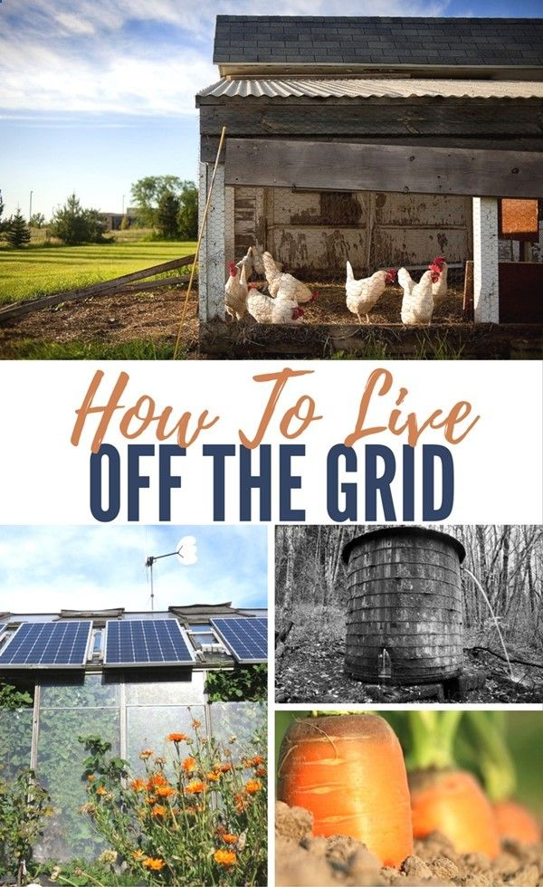 How To Live Off the Grid - Living off the grid basically means living without the supply of gas, electricity and even water provided by local authorities. In the survival community, most are more concern with short-term ways to live off the grid in cases (EMP, natural disasters, etc) where essential supplies like electricity and water would be unavailable for a short period of time.http://www.shtfpreparedness.com/live-off-grid/